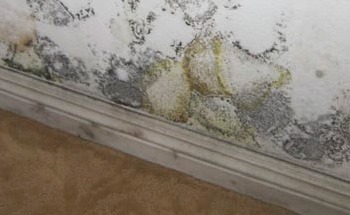Drywall Water Damage repair