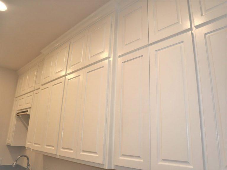 Lantana cabinet painting